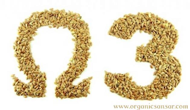 Flax Seeds A Prominent source of Omega 3