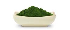 Organic Barley Grass Powder, Indore